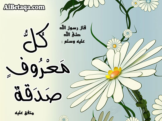 aebadat-metnawe0026